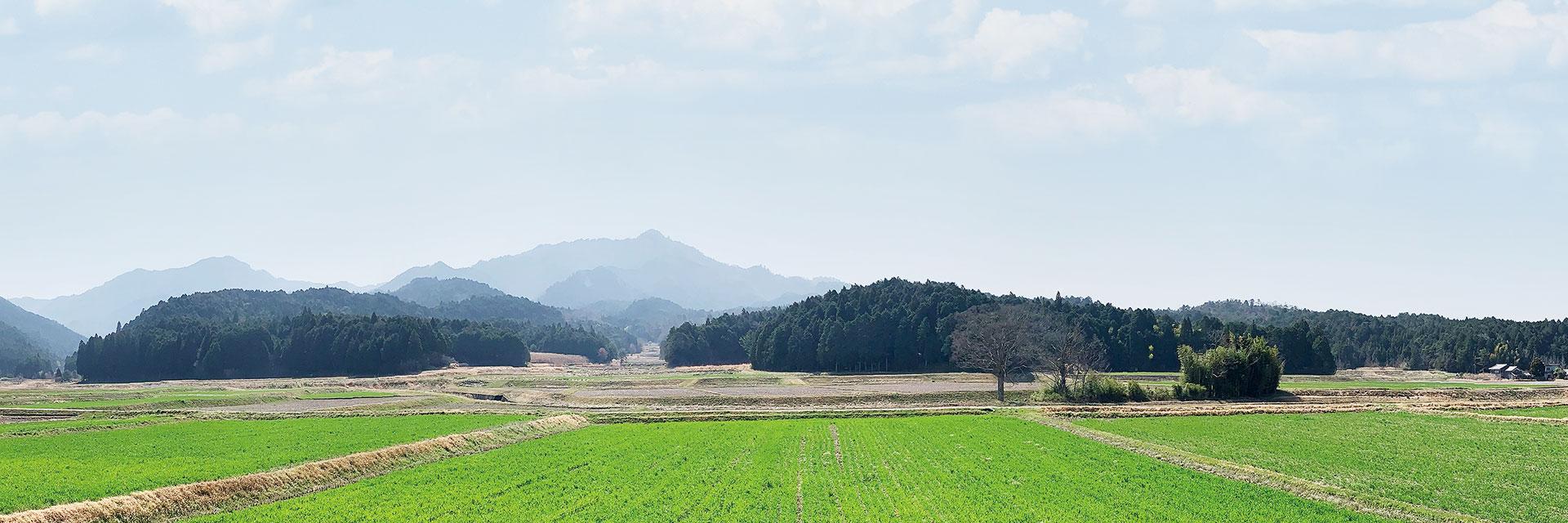 櫟野寺周辺の甲賀の田園風景