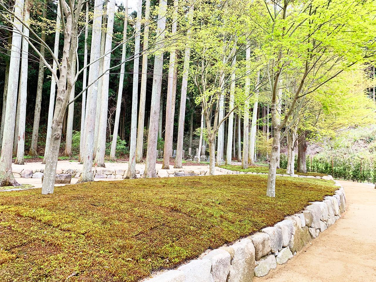 櫟苑の風景
