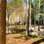 櫟苑の墓苑風景