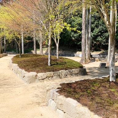 杉苔に覆われた墓苑