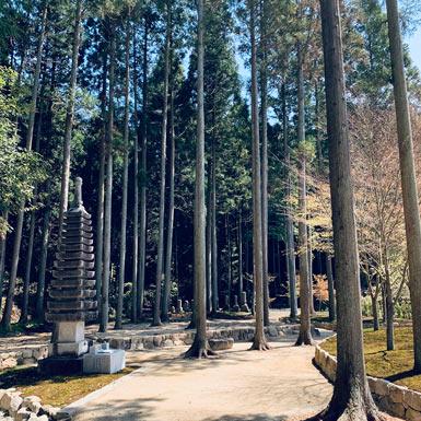 櫟苑の十三重の石塔と墓苑風景