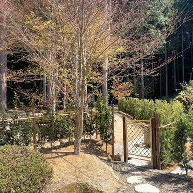 櫟苑の入口