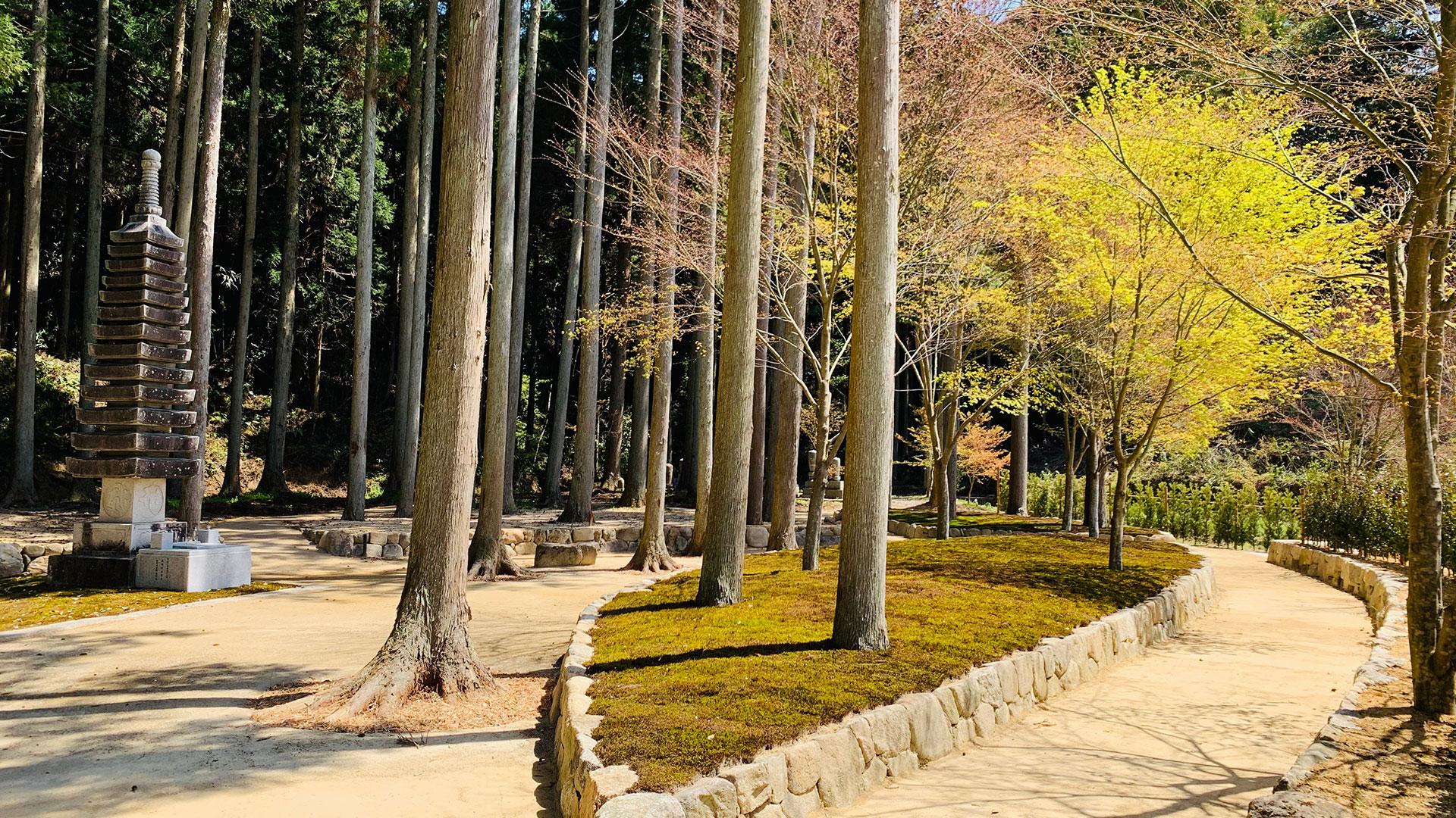 櫟苑の西からの全景