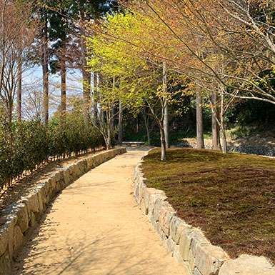 櫟苑樹木葬地の苑路