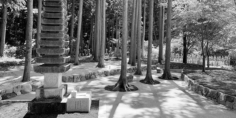 櫟野寺樹木葬墓苑の十三重の石塔が見える風景