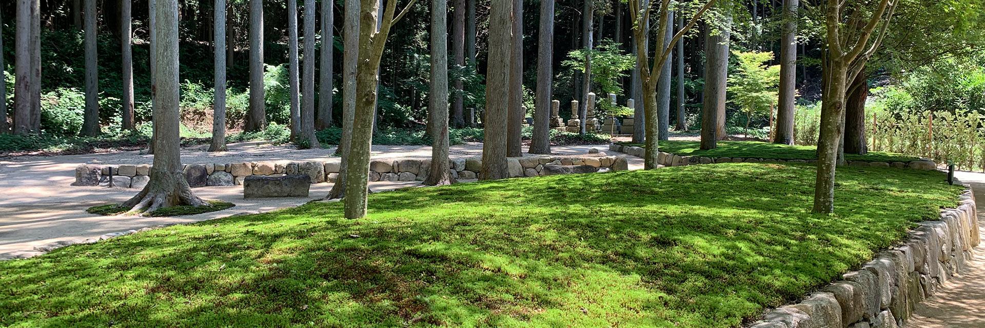 櫟野寺樹木葬墓苑の空ゾーン