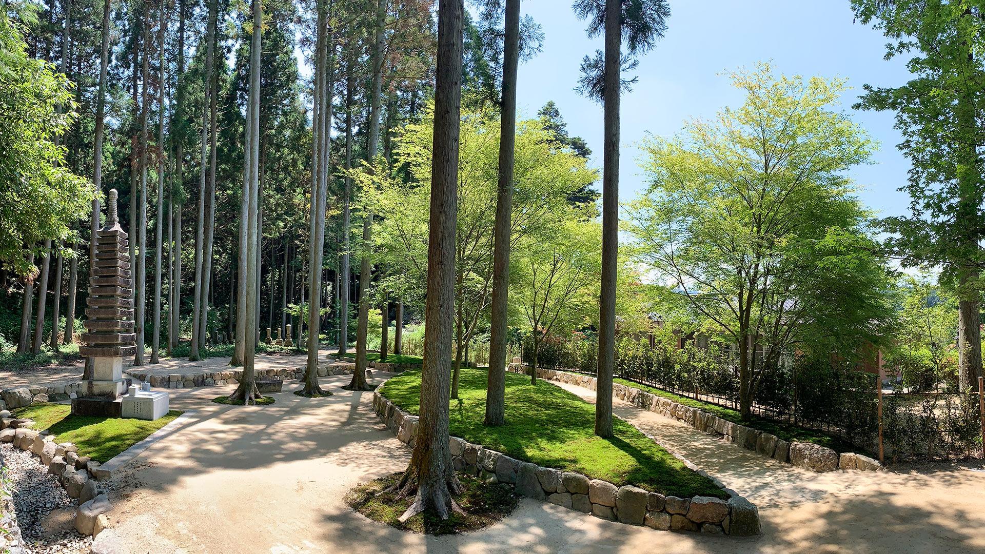 櫟苑樹木葬地の全景西から