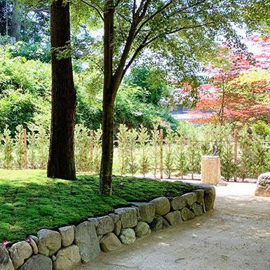櫟苑樹木葬地の空ゾーンと手水鉢