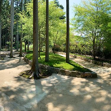 杉木立の中にある墓苑です