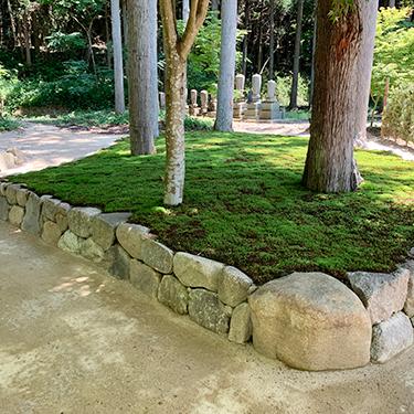 墓苑の中にも杉や楓が生え、埋葬された方は長い時を掛け自然に還ります