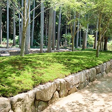 裏山との自然の一体感のある樹木葬墓苑です